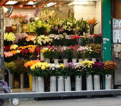 محلات زهور في محافظة الجهراء